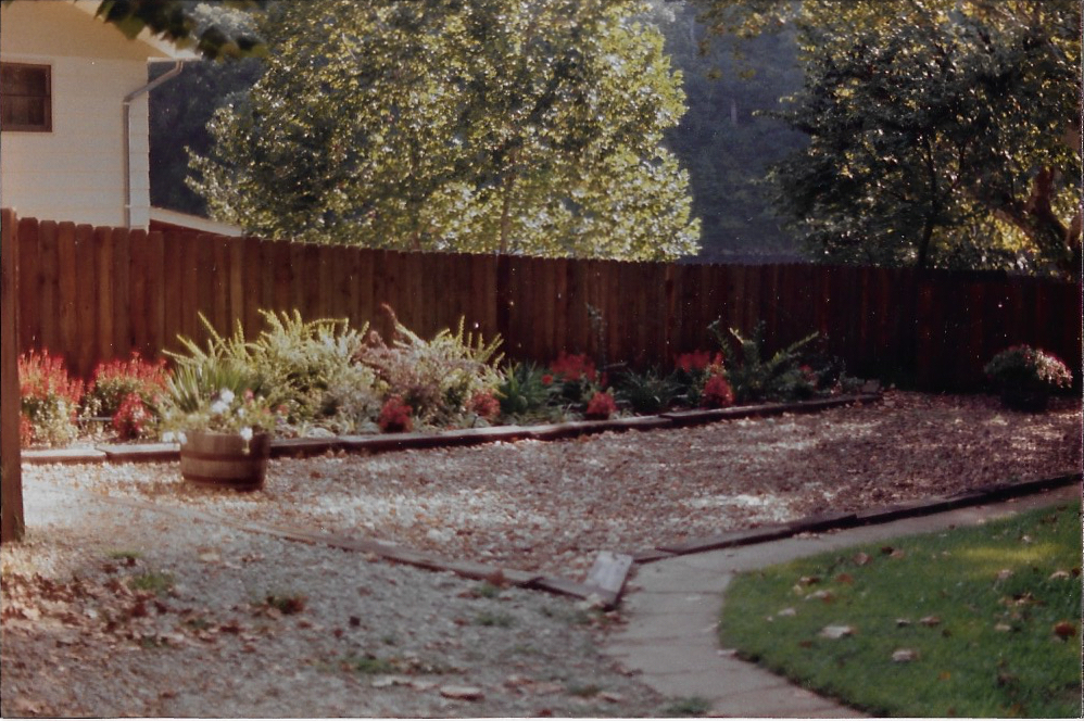 Some of Carolyn's first landscapingide of main building in 1985 where road is now.