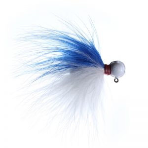 Lilley's Blue/White with White Head