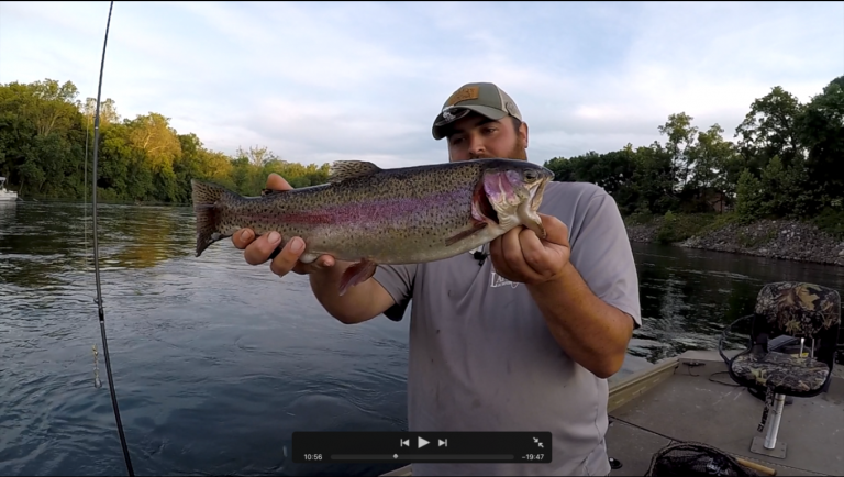 August 11 fishing report