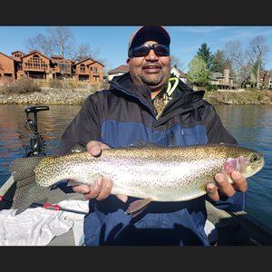Guyon Grant rainbow trout
